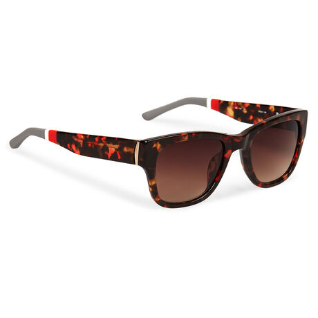 D-Frame Sunglasses